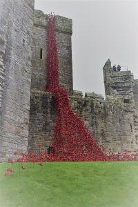 Carlisle Castle to host iconic Weeping Window Poppies